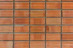 Muro di mattoni senza giunte Immagine Stock Libera da Diritti