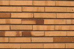 Muro di mattoni sottile orizzontale Immagine Stock Libera da Diritti