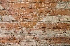 Muro di mattoni su un prato inglese verde Immagine Stock Libera da Diritti