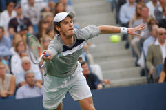 Murray Andy # 4 in the World (136) royalty free stock image