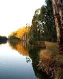 Murray River al tramonto Fotografie Stock