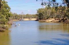 Murray River - Barmah Fotografía de archivo
