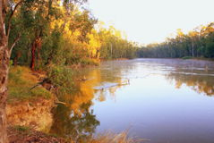Murray River Sunset Arkivbild