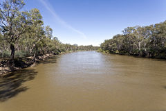 Murray River Stock Image