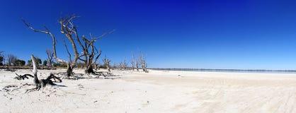 Murraystroomgebied stock afbeelding