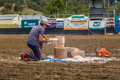 Murrurundi,NSW,澳大利亚,2018年,2月24日:锯艺术的示范 免版税库存照片