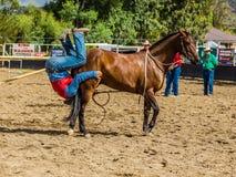 Murrurundi,NSW,澳大利亚,2018年2月24日:在范围无鞍自由式竞争的国王的竞争者 图库摄影