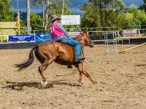 Murrurundi NSW, Australien, Februari 24, 2018: Konkurrent i konungen av den barbacka fristilkonkurrensen för områden arkivfoton
