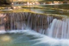 Murs bleus de l'eau de ruisseau dans la forêt profonde images stock