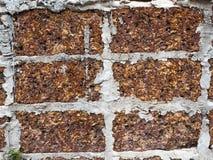 Murs de briques rouges Photographie stock libre de droits