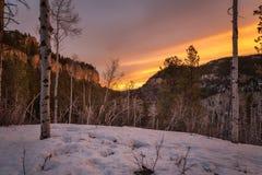 Murs de canyon à l'aube image stock