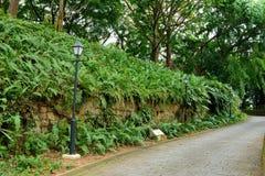 Murs de fort mettant en boîte à Singapour image libre de droits
