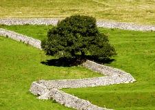 Murs de pierres sèches Images stock