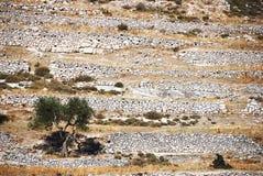 Murs en pierre Images libres de droits