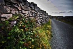 Murs en pierre d'Inisheer Photo libre de droits
