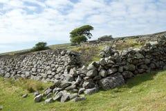 Murs et construction abandonnée. Photo stock