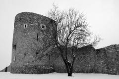 Murs historiques de ville de capital de culture Pecs image stock