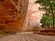 Murs rouges de roche de Canyon de Chelly photographie stock