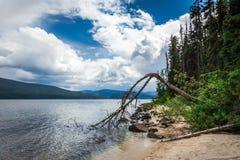 Murtle jezioro w studniach Siwieje parka narodowego Kanada Zdjęcia Royalty Free