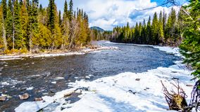 Murtle River In Winter Time In British Columbia, Canada Royalty Free Stock Images