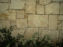 Murverk stenhuggeriarbete med buskar i botten som är passande för bakgrund, tapet Arkivbild