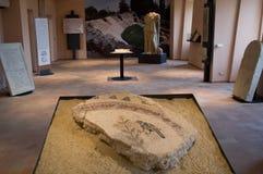 Musée archéologique de Falerone, Italie Images libres de droits