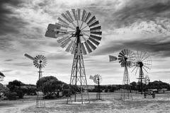 Musée BW de moulins à vent de SA photographie stock libre de droits