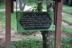 Musée Cambodge - réservoir de guerre Images stock