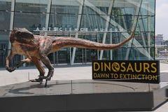 Musée d'ArtScience - Singapour Images libres de droits