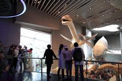 Musée d'histoire naturelle de Changhaï Images stock