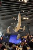 Musée d'histoire naturelle de Changhaï Images libres de droits