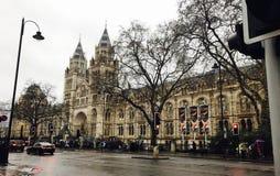 Musée d'histoire naturelle de Londres Images stock