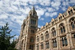 Musée d'histoire naturelle, Londres Photographie stock