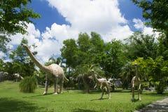 Musée de dinosaure Photographie stock libre de droits