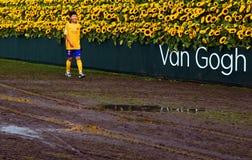 Musée 2015 de Labyrint Van Gogh de tournesol Photos libres de droits