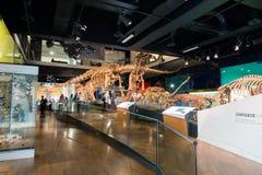 Musée de Melbourne Photographie stock libre de droits