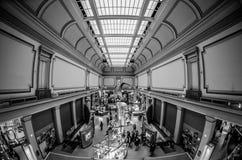 Musée de Smithsonien d'histoire naturelle images stock