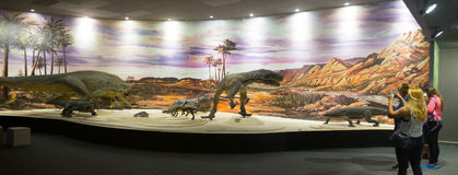 Musée des sciences naturelles dans Ischigualasto photo stock