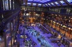 Musée National d'histoire naturelle image stock
