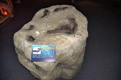 Musée nautique d'objets façonnés titaniques mystiques du Connecticut Etats-Unis Image libre de droits