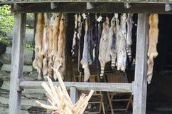 Musée vivant d'histoire de Shoal Creek Image stock