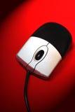 mus fotografering för bildbyråer