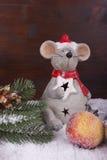 Mus med den Apple granfilialen och snö för jultid Royaltyfria Foton