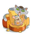 Mus och katt Royaltyfria Foton