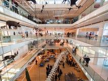 `-MUSA`en är museet av vetenskap i Trento planlade vid den italienska arkitekten Renzo Piano Arkivfoto