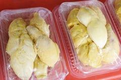 Musang królewiątka durian zdjęcia stock