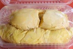 Musang królewiątka durian zdjęcie stock