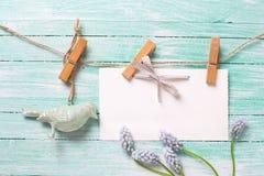 Muscaries frescos da mola, pássaro decorativo e Empty tag no pano Imagens de Stock