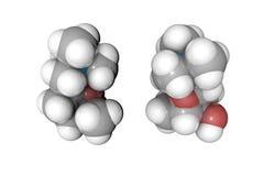 muscarine分子模型  原子代表作为球形用常规颜色编码:氢白色,碳 皇族释放例证