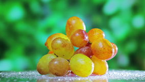 Muscat grapes cluster rotating on green. Outdoor background stock video footage